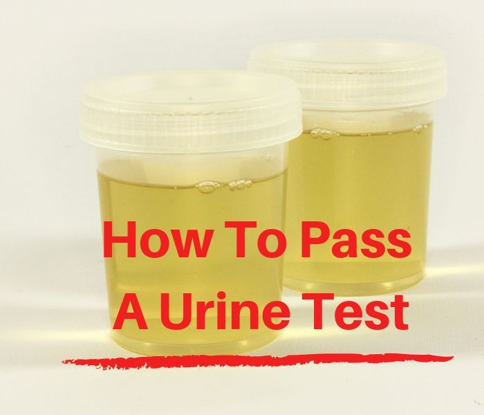 How To Pass A Urine Test