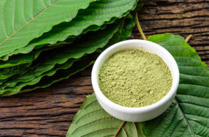 What Exactly is Kratom?